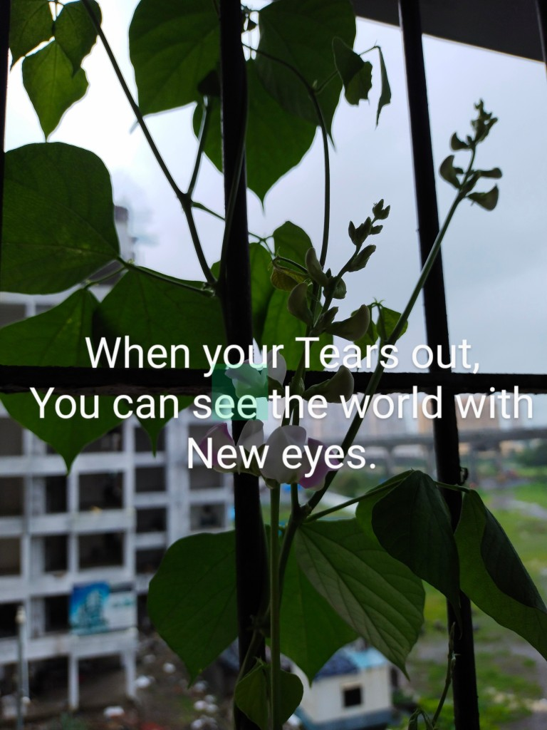 When your tears out you can see the world with the prospective.